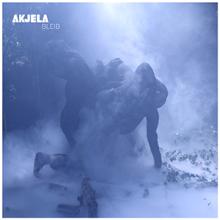 houztekk records 018: Akjela – Bleib Ep